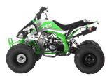 PRE ORDER AUGUST - ORION PANTHER 110cc KIDS QUAD BIKE - MotoX1-Motocross ATV