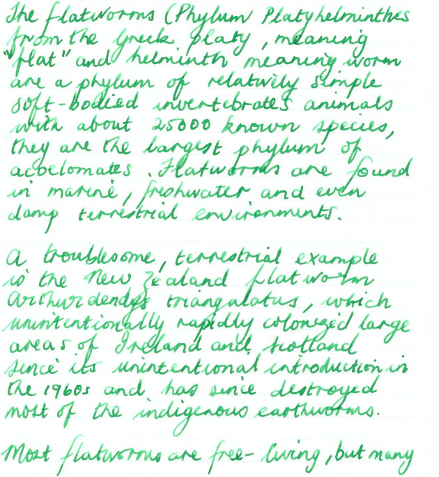 Rohrer & Klingner Fountain Pen Writing Ink - Verdura (Bright green) - Skribr - 2