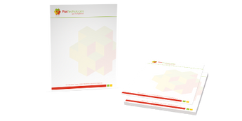 Full-Color Letterhead (8.5