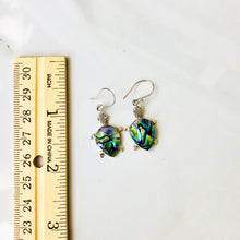 Load image into Gallery viewer, Abalone Turtle Earrings set in Sterling Silver
