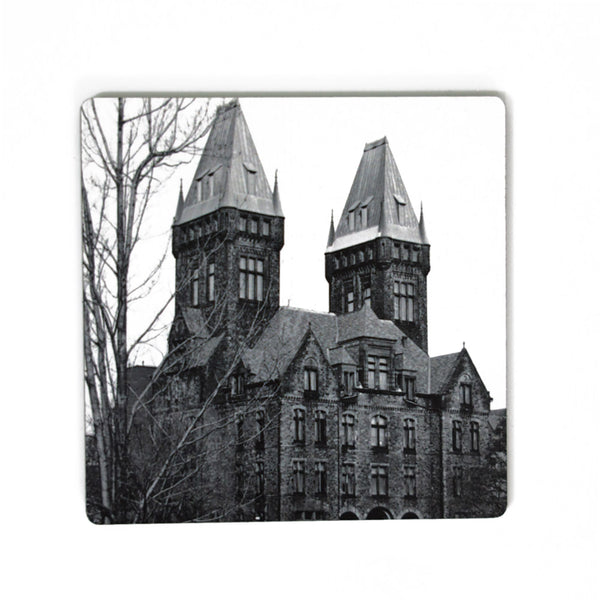Buffalo Photo Coasters