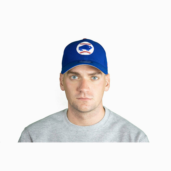 Buffalo Bisons Blue Fitted Cap