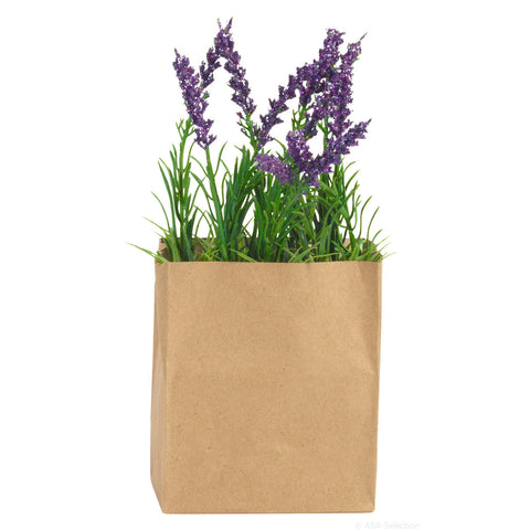 ASA Lavender in a Rectangular Paperbag