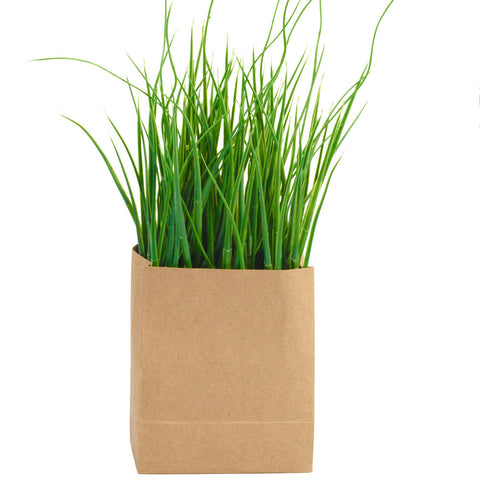 ASA Grass in Rectangular Paperbag