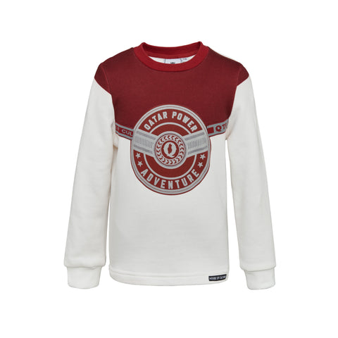 Qatari Power sweater