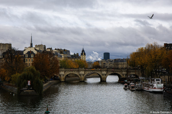 Fall Along the Seine