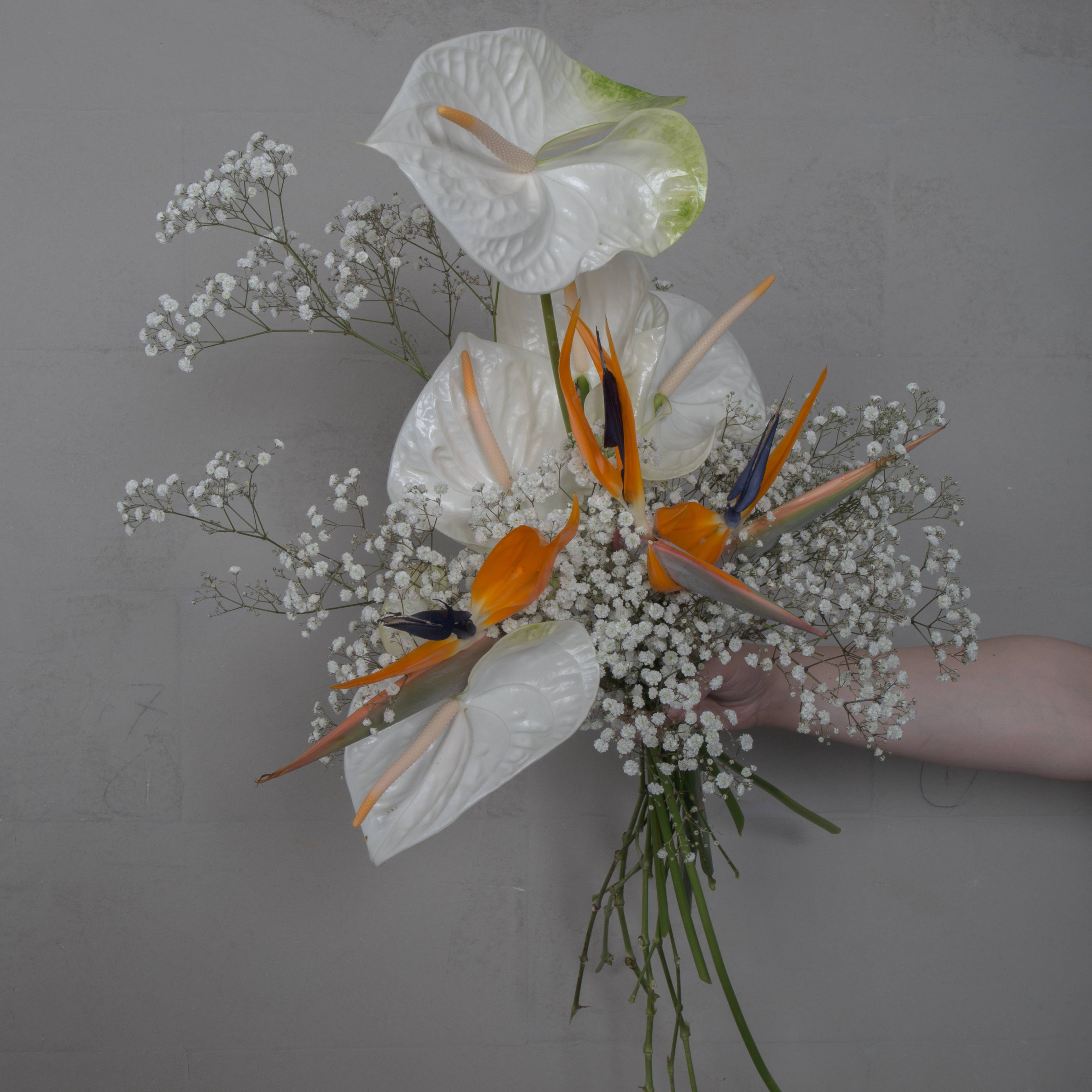 Wedding-bouquet-Finecut-weddings-collection-4-2019-homogeneity-and-harmony-with-gypsophila-and-strelitzia-known-as-the-bird-of-paradise