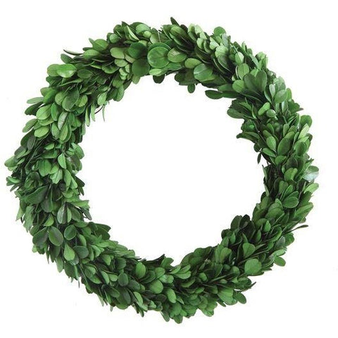"9"" Preserved Boxwood Wreath Set of 2"