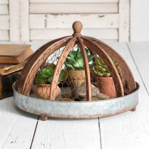 Metal Tray with Chicken Wire Cloche