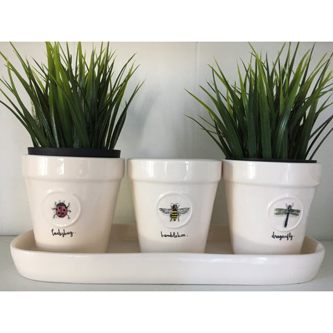Rae Dunn Insect Planter Set
