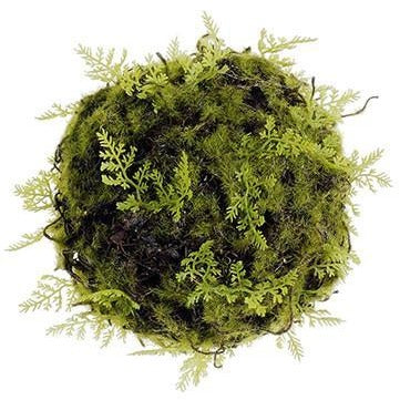 Moss & Fern Pomander Balls - Set of 3