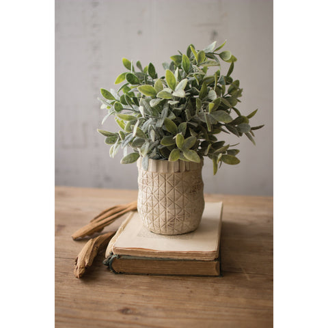 Artificial Sage in Criss Cross Pot