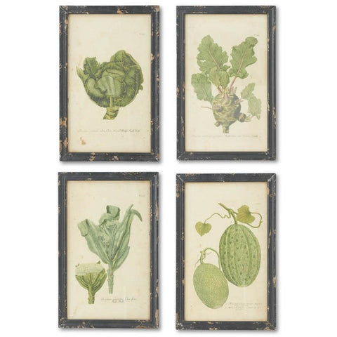 Set of 4 Vintage Style Vegetable Prints