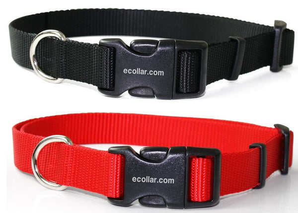 E-Collar Quick Snap Nylon Collar For 300, 400, 900 and Barkless Series