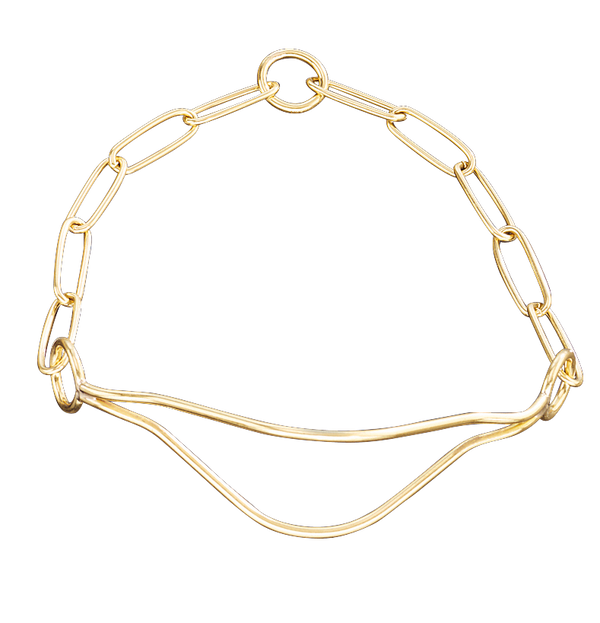 Sprenger Show Collar - Polished Brass II