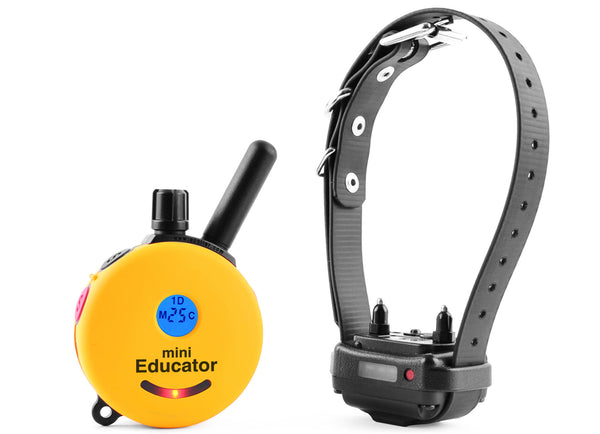 E-Collar Educator ET-300 Series Remote Dog Trainer Systems