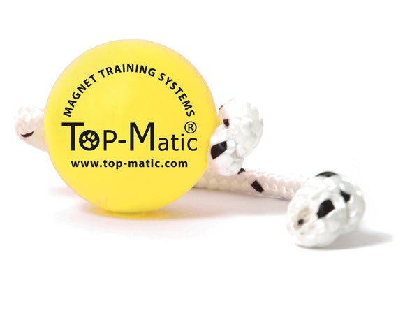 Top-Matic Magnetic Soft Fun Ball Mini