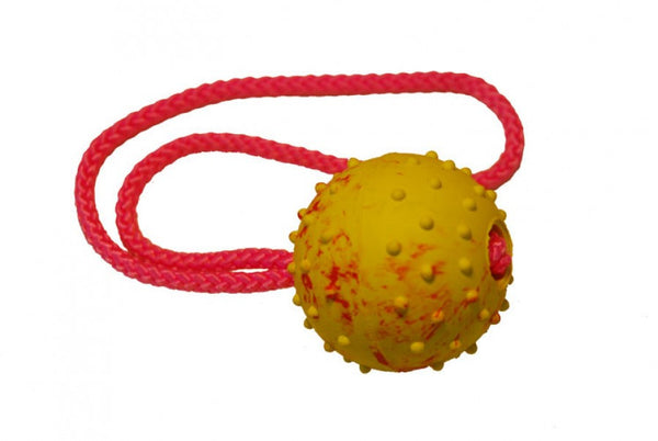 Gappay - Gappay 6 Cm - 2 1/4 In Solid Rubber Ball With Handle - Kennel Club Gear