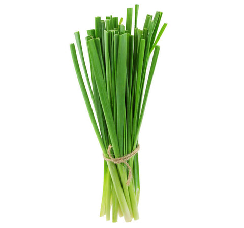 Chinese Chives 九菜