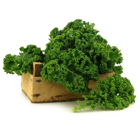 Green Kale (Crate of 24 bunches)