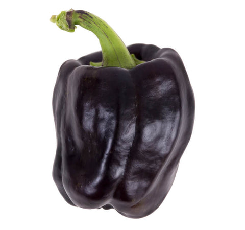 Purple Bell Peppers (2 pcs)