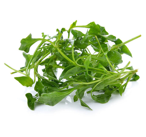 Chinese Watercress 西洋菜
