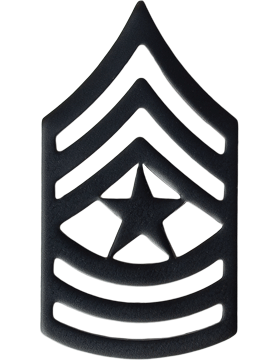 BLACK SERGEANT MAJOR PIN