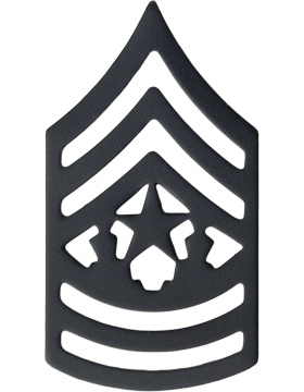 BLACK COMMAND SERGEANT MAJOR PIN