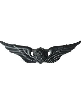 BLACK AIRCRAFT CREWMAN PIN