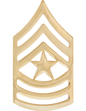 GOLD SERGEANT MAJOR PIN