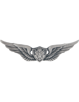 SILVER OXIDE AIR CREWMAN PIN