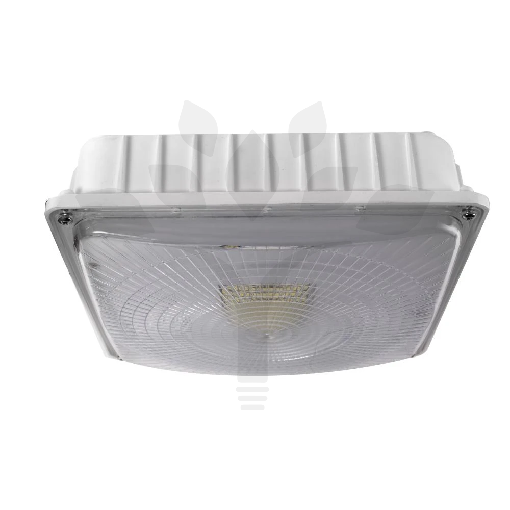 LED Dimmable Canopy Light