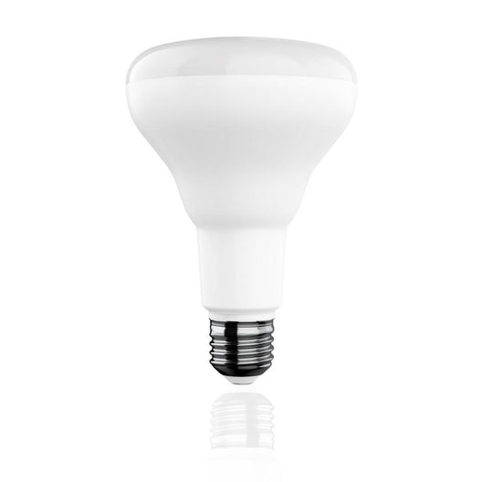 BR30 LED Light Bulbs - 9 Watt- 650 Lumens - 5000K - Energy Star