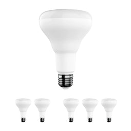 BR30 LED Light Bulbs - 9 Watt- 650 Lumens - 5000K - Energy Star, E26 Base