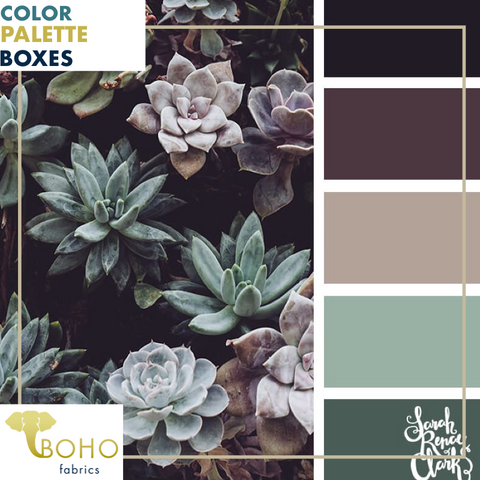 """Plum & Succulents"", Mystery Color Palette Box."