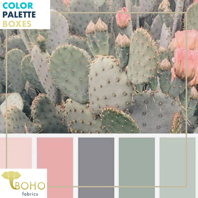 """Cacti Blossoms"", Mystery Color Palette Box."