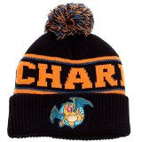 Pokemon - Charizard Pom Pom Hat | SKYFOX GAMES
