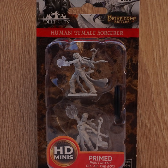 Wizkids Deep Cuts - Human Female Sorcerer (Unpainted Miniature) | SKYFOX GAMES