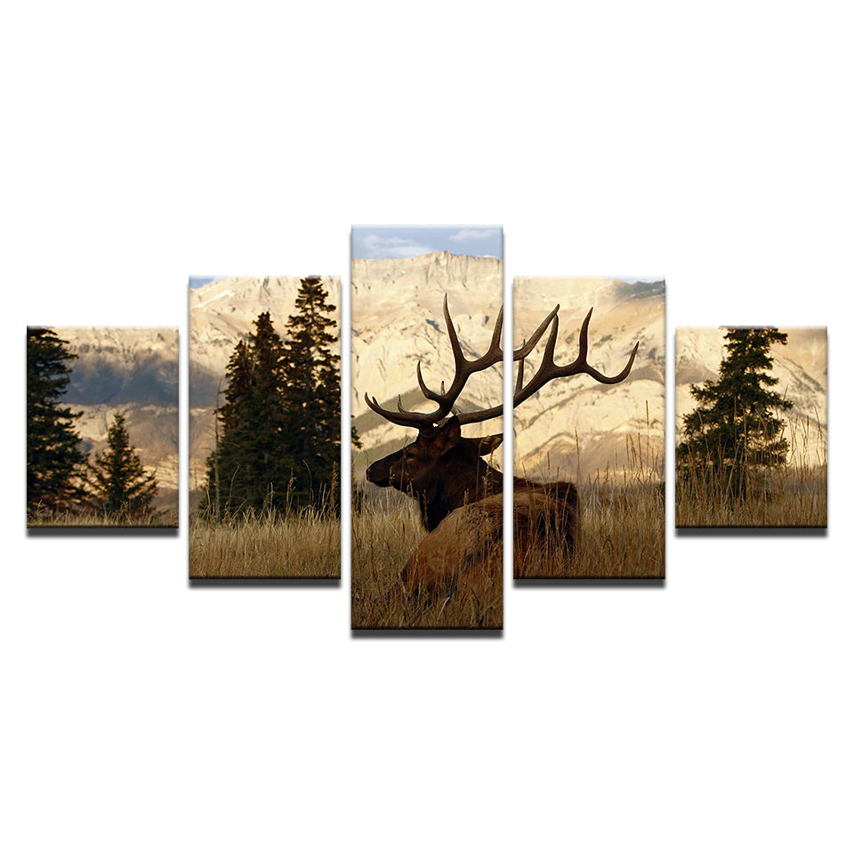 Mountain Elk Wall Art