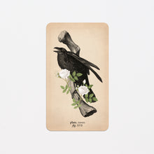 Load image into Gallery viewer, Memento Mori Oracle Deck