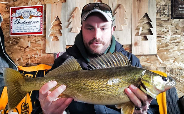 walleye caught with smartjig rattle reel - automatic fishing line jigging device