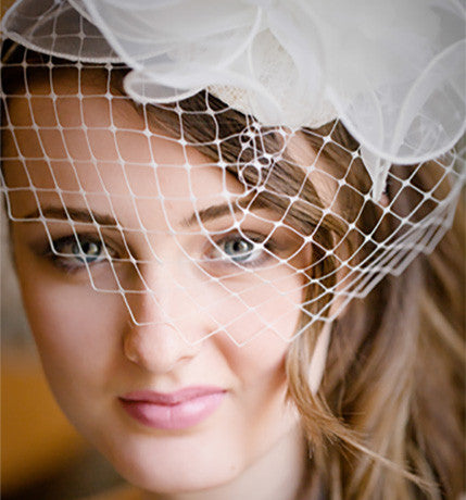 Birdcage Tiara/Fascinator