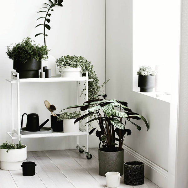 Capricho Bauhaus Trolley from Kristina Dam, styled as an indoor garden