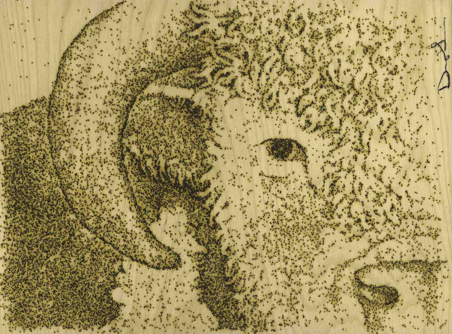 Hereford Cow (Prints)