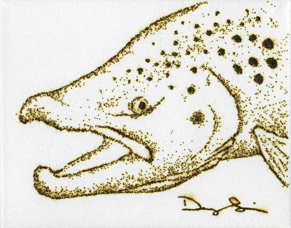 Small Brown Trout (Prints)