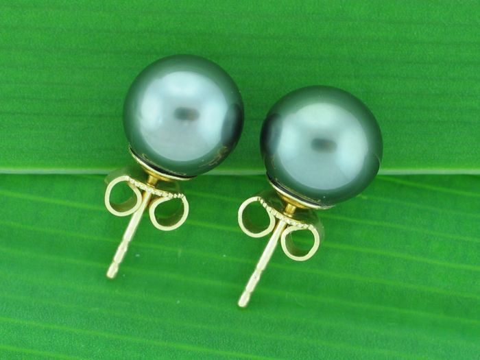 Salt Water Cultured Tahitian Pearl Earrings 1