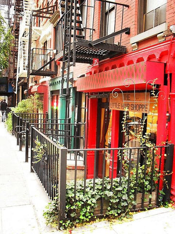 TOUR - Authentic New York, Greenwich Village and Williamsburg