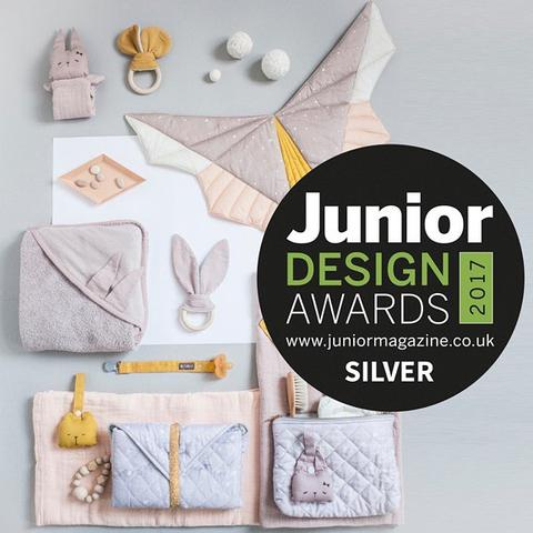 Junior Design Award Winner!