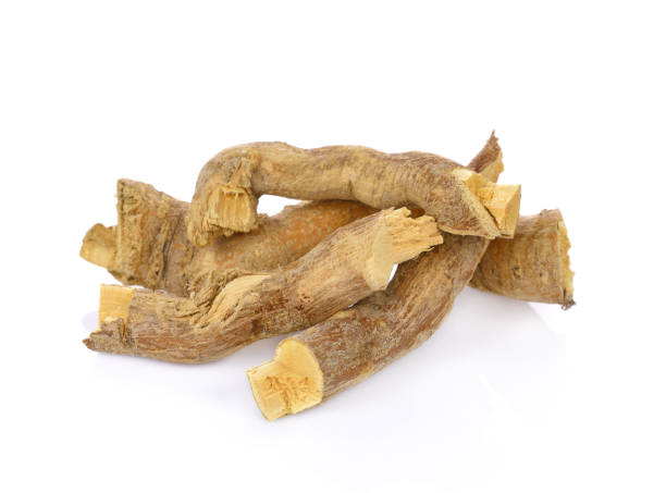 What is Tongkat Ali? It's a Natural Herbal Testosterone Booster