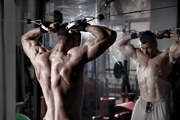 Which Is The Best Testosterone Booster?